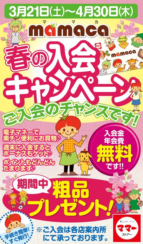ママカ春の入会キャンペーン